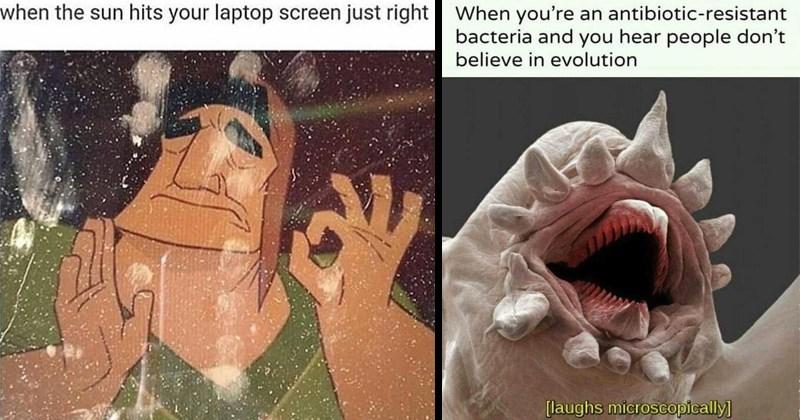 amusing memes against boredom