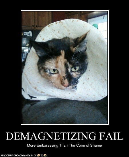 DEMAGNETIZING FAIL More Embarassing Than The Cone of Shame