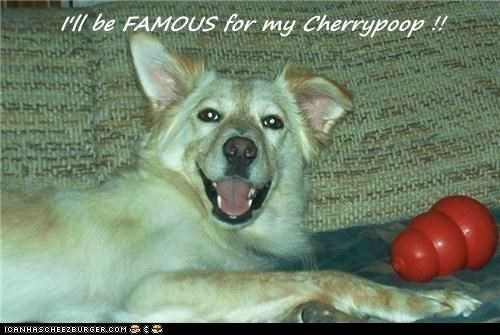 Cheezburger Image 7576985088