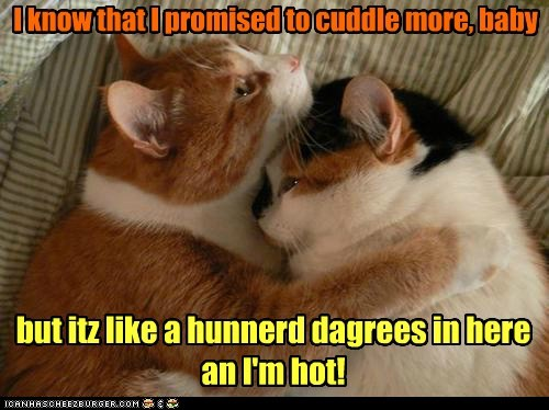 hot romance temperature funny - 7578995200