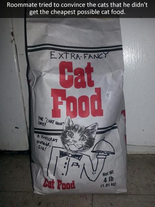 fancy picky cat food funny