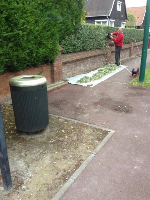 Cutting His Hedges or Rolling a Massive Joint?