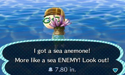 sea anemone,puns,animal crossing,funny