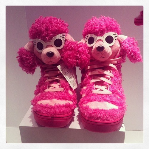 shoes poodles pink funny - 7579736576