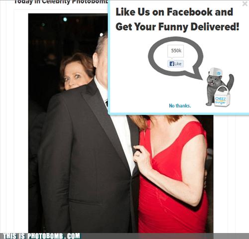 photobomb meta funny - 7580027392