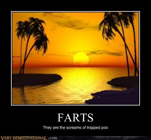 wtf farts poop jokes funny - 7580845312