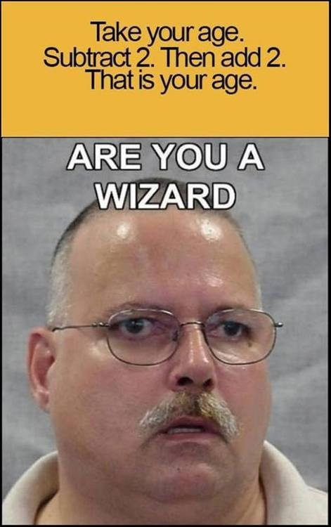 wizard,idiots,math,funny,g rated,School of FAIL