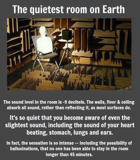 quiet room science funny weird - 7582264576