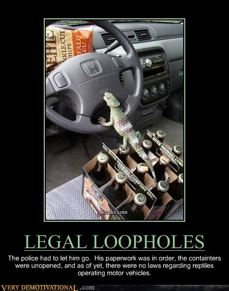 wtf drunk driving lizard funny - 7584143360