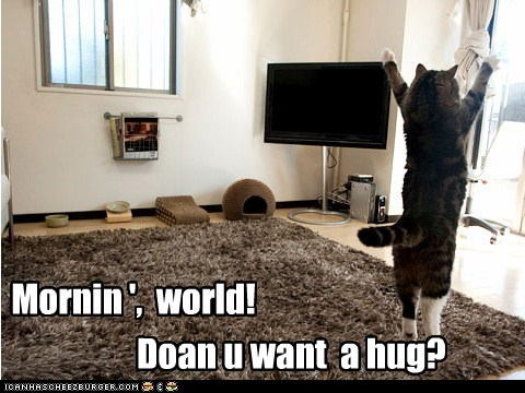 Mornin ', world! Doan u want a hug?