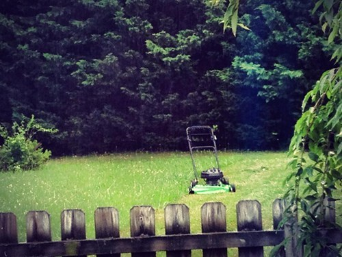 lawn mower summer lazy yard work funny