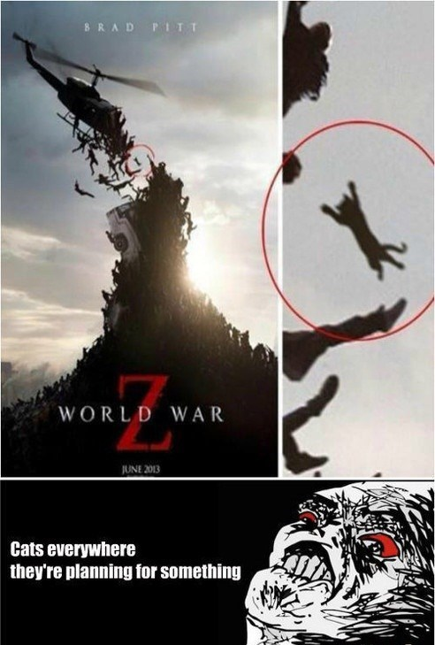 wtf movies world war z Cats - 7586760192