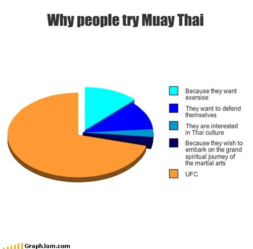 pie charts muay thai graphs funny - 7587157248