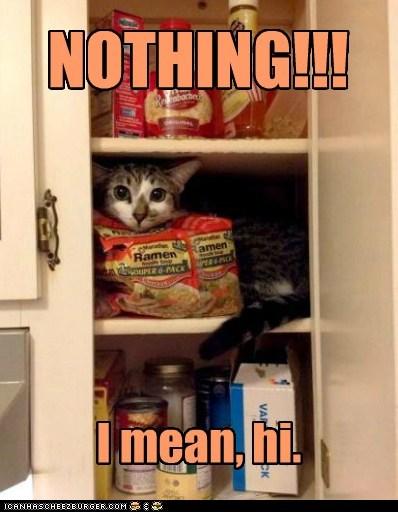 NOTHING!!! I mean, hi.