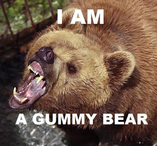 gummy bear,bear