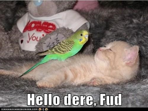 Cheezburger Image 7588192256