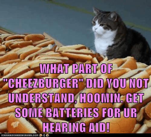 Cheezburger Image 7588240640