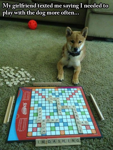 dogs,Challenge Accepted,scrabble