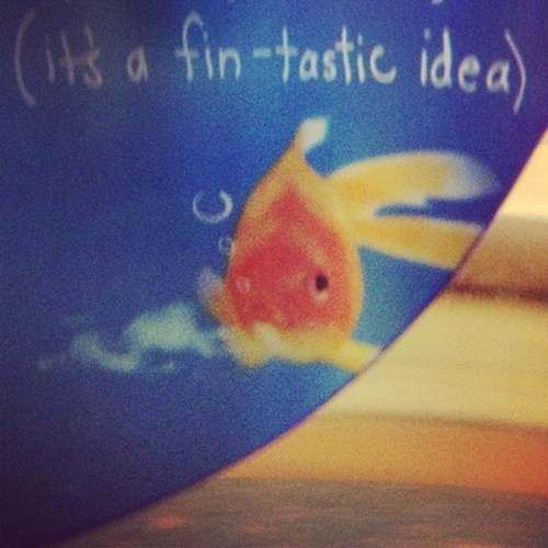 puns fish funny - 7589478912