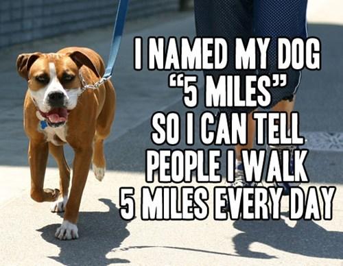 sneaky walking funny - 7589608704