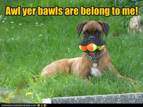 tennis balls,all your base are belong to us,mouthful,funny