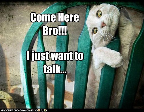 Come Here Bro!!! I just want to talk...