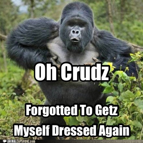 clothes funny dressed gorilla - 7591478016