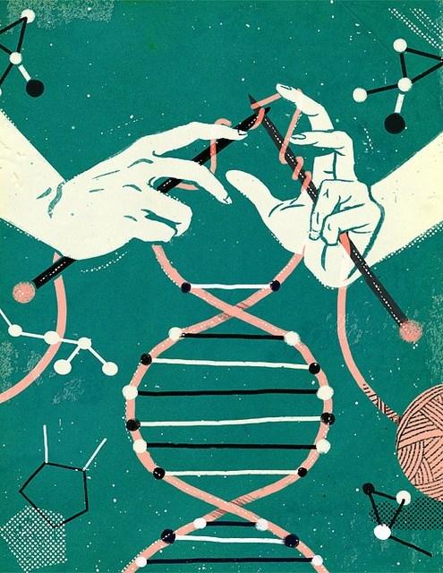 art epigenetics knitting science DNA - 7592228864