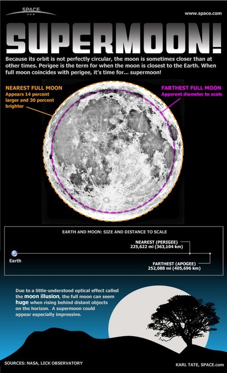 moon Astronomy science funny - 7592910848