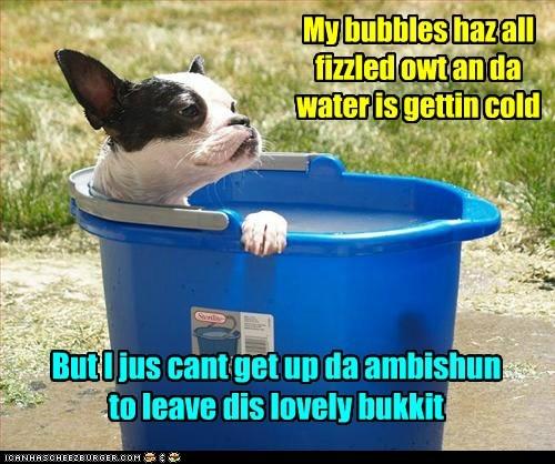 water bath bubbles funny - 7593354496