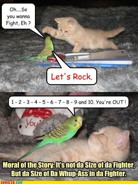 Cheezburger Image 7594189056