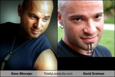 david draiman disturbed rene bitorajac totally looks like funny
