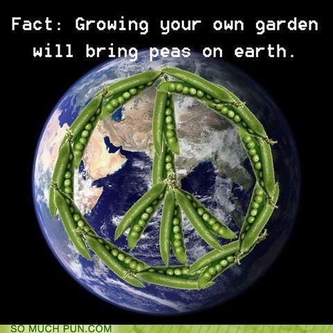 peace on earth,puns,peas,funny