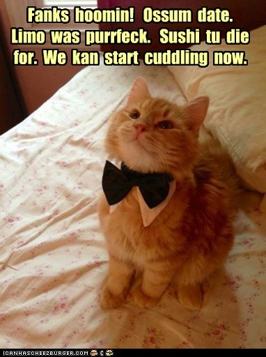 Fanks hoomin! Ossum date. Limo was purrfeck. Sushi tu die for. We kan start cuddling now.