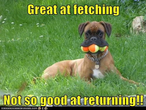 Great at fetching Not so good at returning!!