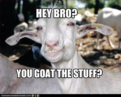 drugs pun high goats funny - 7597303040
