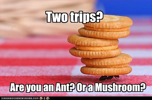 Two trips? Are you an Ant? Or a Mushroom?
