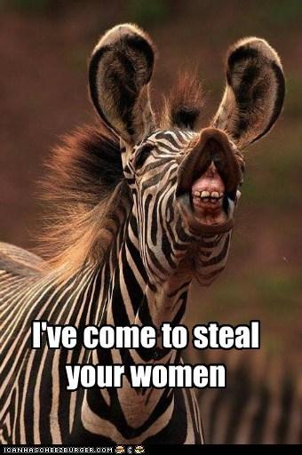 zebra charming funny women derp - 7597352704