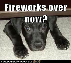 fireworks cute fourth of july - 7598718208