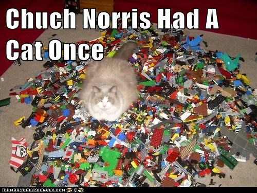 stepped on a lego Badass legos chuck norris