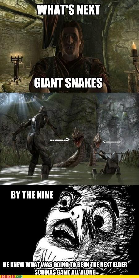 giant snakes,monster,elder scrolls,Videogames,snakes,funny
