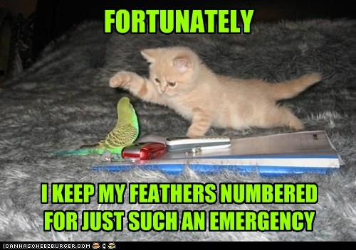 FORTUNATELY I KEEP MY FEATHERS NUMBERED FOR JUST SUCH AN EMERGENCY