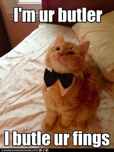 bowtie butler funny - 7600626688