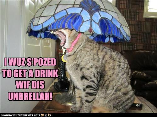 drink umbrella service funny - 7600764160
