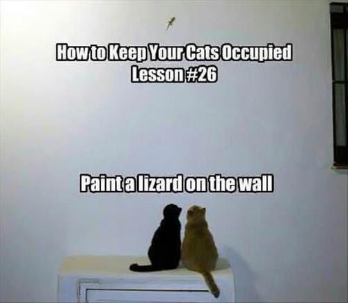 fun lizard wall funny - 7601172480