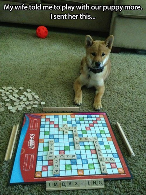 play scrabble funny
