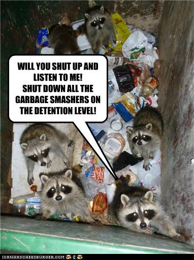 smasher,star wars,raccoon,garbage,funny