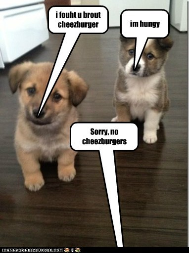 Cheezburger Image 7602458880