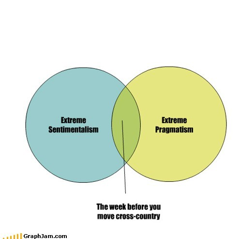 venn diagrams,moving,graphs,funny