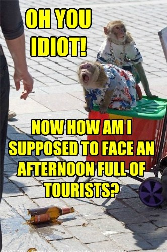 OH YOU IDIOT! NOW HOW AM I SUPPOSED TO FACE AN AFTERNOON FULL OF TOURISTS?